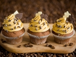 Autumn Mocha n Cream Cupcakes