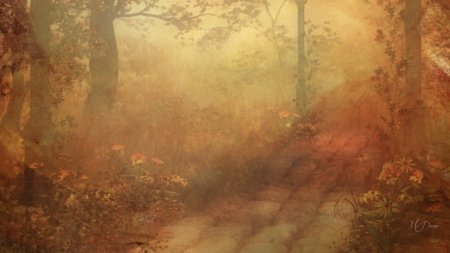 Autumn Softness - woods, soft, muted, forest, trees, autumn, subtle, pathway, fall