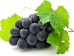 Aromatic grapes