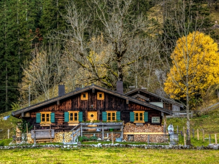 Hut on Autumn Forest - hut, trees, slope, mountain, nature, forest, houses, autumn