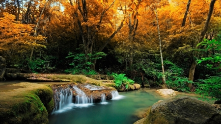 Waterfall in Tropical Autumn Forest - Forests, Autumn, Waterfalls, Nature, Fall