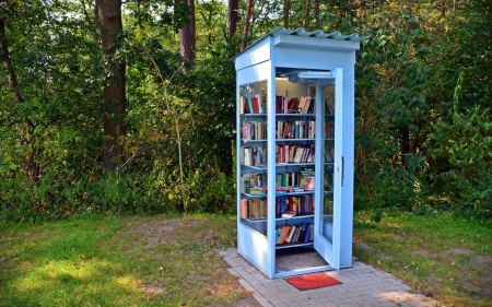 Mini Library - hut, cabin, mini library, books