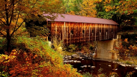 Autumn Covered Bridge - stream, autumn, forest, nature, covered, bridge, trees