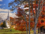 Fall Foliage in Peacham, Vermont