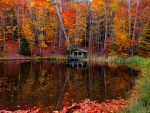 Autumn hut