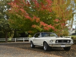 Autumn 1968 Ford Mustang 2-Door Hardtop 302ci V8 C4 Automatic J-Code