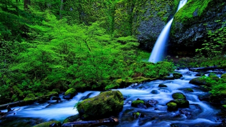 Waterfall with Green Moss - stream, stones, moss, waterfall, green, forest, nature, trees