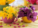 Purple Yellow Cup of Flowers