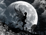 Fairy and Moon