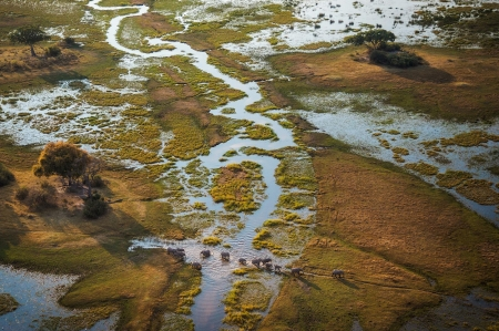 Africa's Okavango Delta - Nature, Rivers, Wildlife, Deserts, Elephants, Africa, Deltas