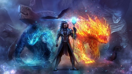 fire and ice - wizard, ice, bird, fire
