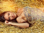 A Day In The Hay . .