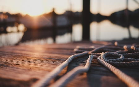 Ropes - landscape, ropes, photography, nature, macro
