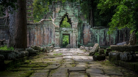 Temple in Cambodia - Cambodia, Temple, in, nature