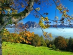 Autumn Traunsee lake