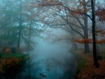 fall mist over river