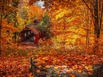 Old Covered Bridge in Autumn Forest Foliage