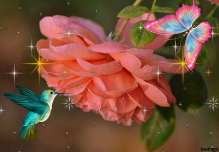 BUTTERFLY WITH HUMMINGBIRD - HUMMINGBIRD, BUTTERFLY, ART, ABSTRACT