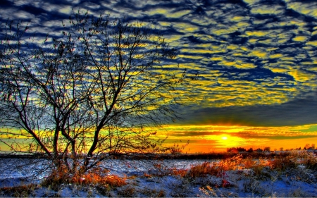 Early Winter Morning - landscaoe, sunrise, sky, snow, clouds