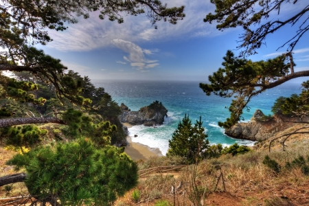 California Coast - tree, nature, Coast, California