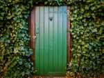 Door of Ivy Covered House