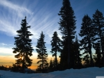November Sky,Mount Seymour,British Columbia
