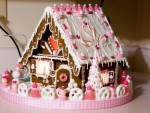 Pink And Pretty Gingerbread House