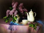 MORNING TEA AND LILACS