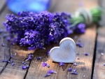 Lavender with ♥