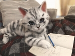 The cat is drawing