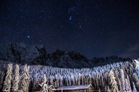 Starry-Winter-Night - Nature, Starry, Night, Winter