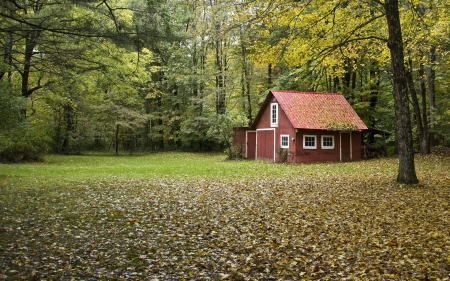 Red Barn in Autumn Forest
