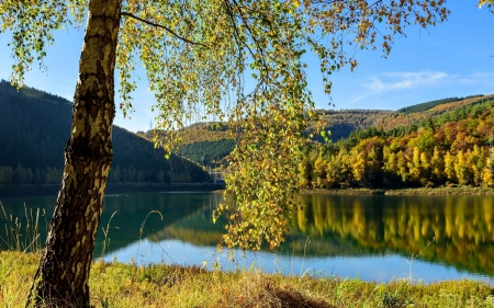 Lake in Autumn - hills, lake, birch, autumn, nature