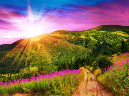 Mountains with Pink Flowers Sunset - sunset, rays, bright, valley, sky, purple, nature, dazzling, mountains