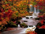 Waterfall in Autumn