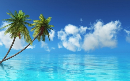 Tropical Island - Sea, Blue, Water, Palm trees, Nature