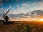 Windmill Among Field at Sunset