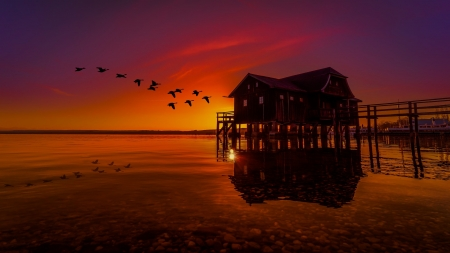 Evening Sky - Sunset, Birds, House, Bridge