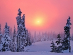 Sunset at winter