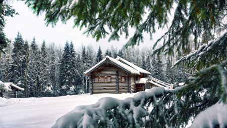 Forest House in Winter - snow, house, nature, winter, forest, trees