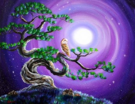Owl in Twisted Pine Tree - pine tree, animals, owl, love four seasons, moons, draw and paint, paintings, nature, attractions in dreams