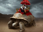 Beautiful girl on a giant turtle