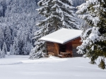 Winter in South Tyrol