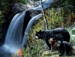 Bears at the Waterfall