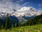 MT Rainier,Washington