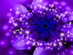 Purple Sparle Flower