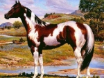 Wild Painted Horses