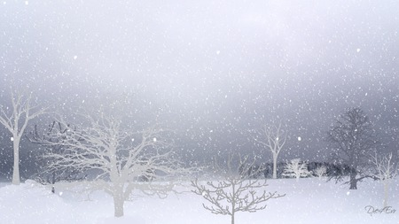 Looking Out on Winter - trees, widescreen, snow, winter, firefox persona
