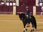Pablo Hermoso de Mendoza mounted on his Spanish stallion