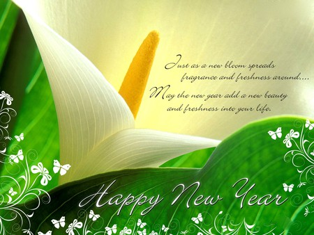 NEW YEAR MESSAGE - new year, message, HAPPY, blossoms